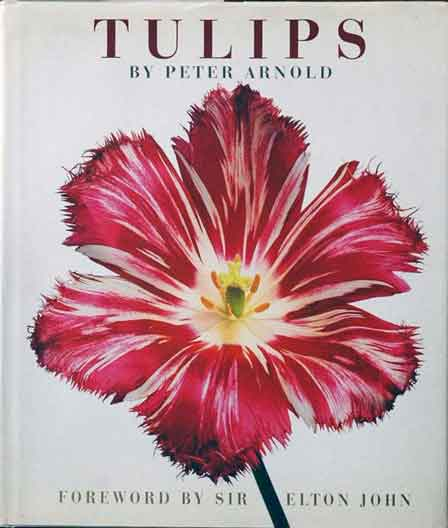 Tulips. Peter Arnold.