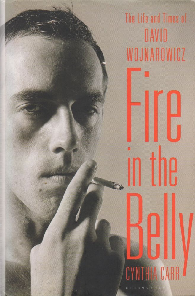 Fire in the Belly_ The Life and Times of David Wojnarowicz. Cynthia Carrr.