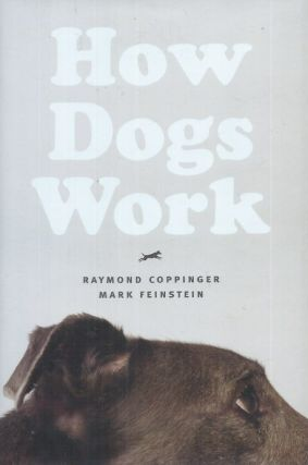 How Dogs Work. Raymond Coppinger, Mark Feinstein